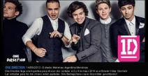 Participa de One Direction! haciendo clic aquí! - www.showtravel.com.ar
