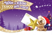 Win a £500 Tesco gift cards - www.cushellemagicalchristmas.co.uk