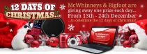12 Days of Christmas Prizes - www.mcwhinneys.com