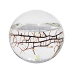 The Ecosphere Winter Giveaway - Cool Stuff on Amazon