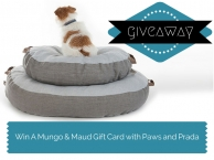 Win £50 to spend at Mungo and Maud - Paws and Prada