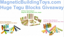 Magnetic Wooden Blocks Giveaway - Magnetic Building Toys