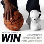 Win with Metta World Peace - Raven5