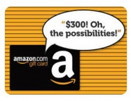 Enter to win a $300 Amazon Gift Card. - Littlecloud Ventures