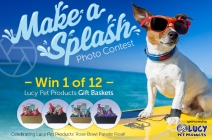 Lucy Pet Products' Make a Splash Photo Contest - Lucy Pet Products