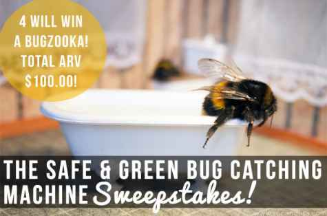Safe & Green Bug Catching Machine Giveaway - Ron and Lisa