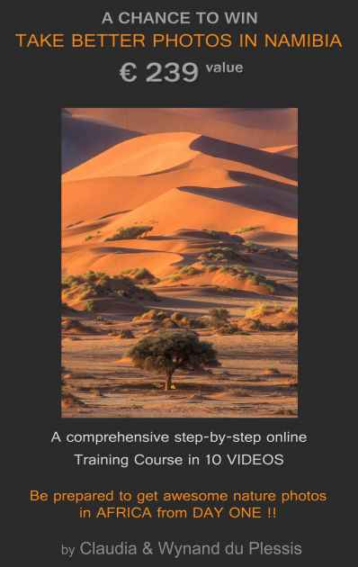 Win an Awesome Namibia Nature Photography Course - Take Better Photos in Namibia