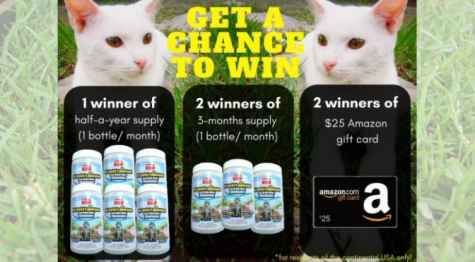 No More Cat Urine Odor Giveaway+Amazon Gift Cards - GrandLifeBrands