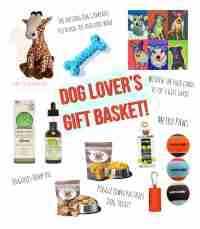 Dog Lover's Gift Basket Giveaway - The Farting Dog Company