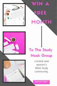 Win a Free Month of the Study Nook Group - fishymom