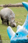 Win a family day ticket to Hampshires Marwell Zoo - www.letsgowiththechildren.co.uk
