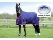 Win a WeatherBeeta wardrobe for your horse - www.greatcompetitions.co.uk